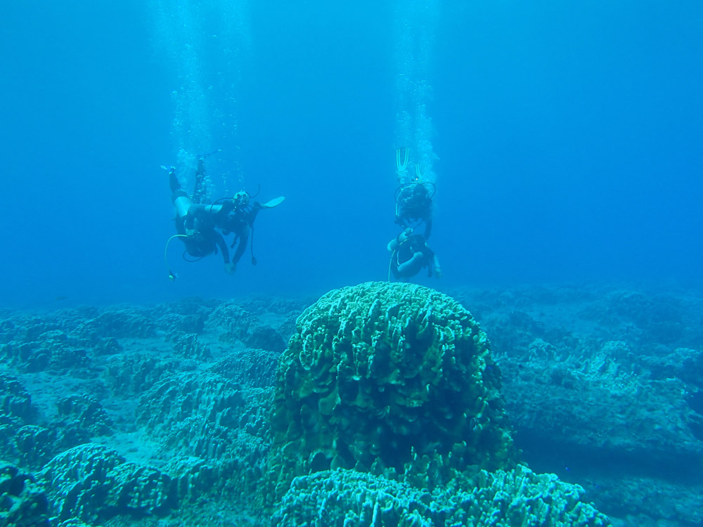 Dual first time dives with instructors